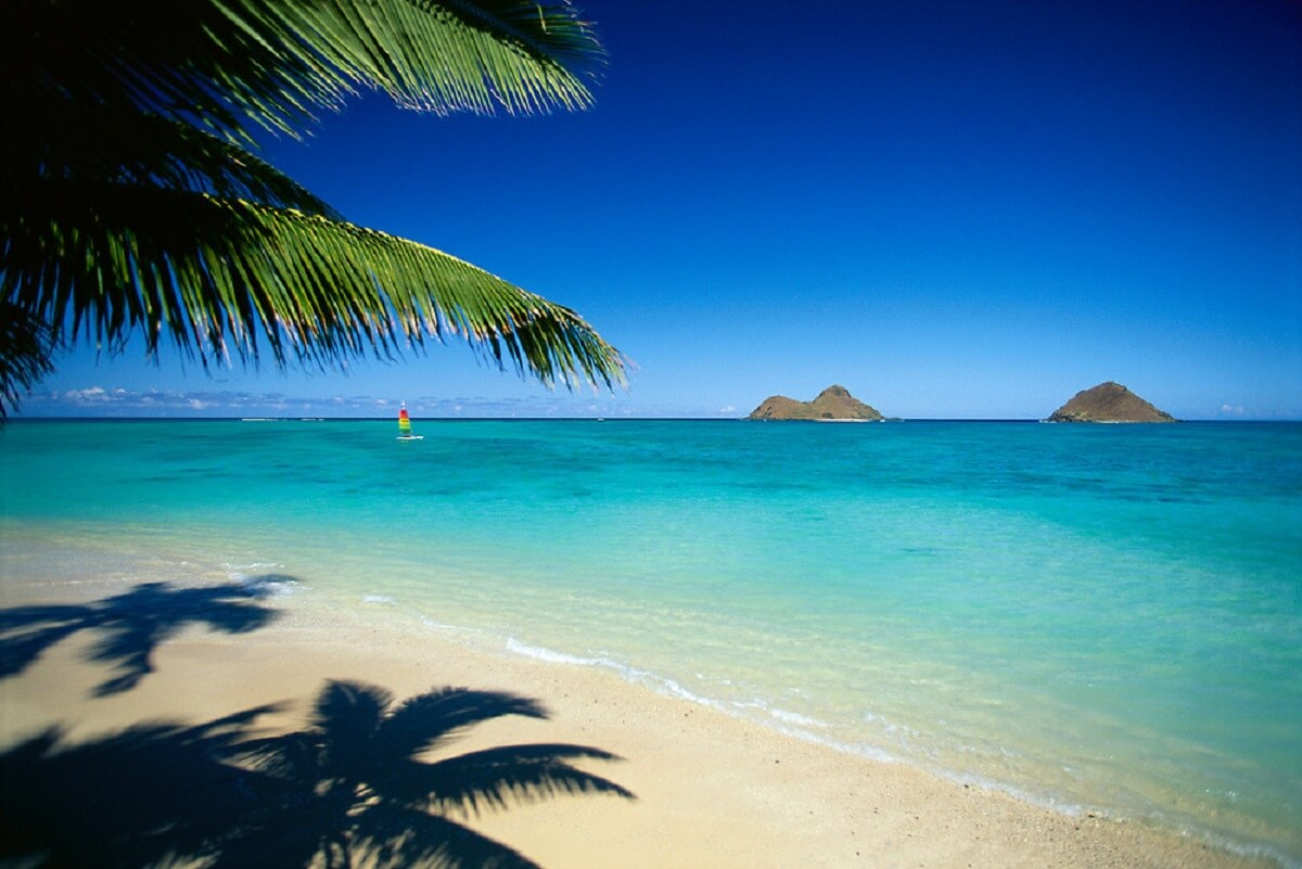 Best Beaches In Oahu Waikiki Vacations Condo